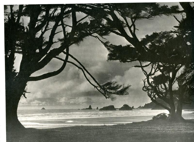 NW_Beaches_Oregon009.tif