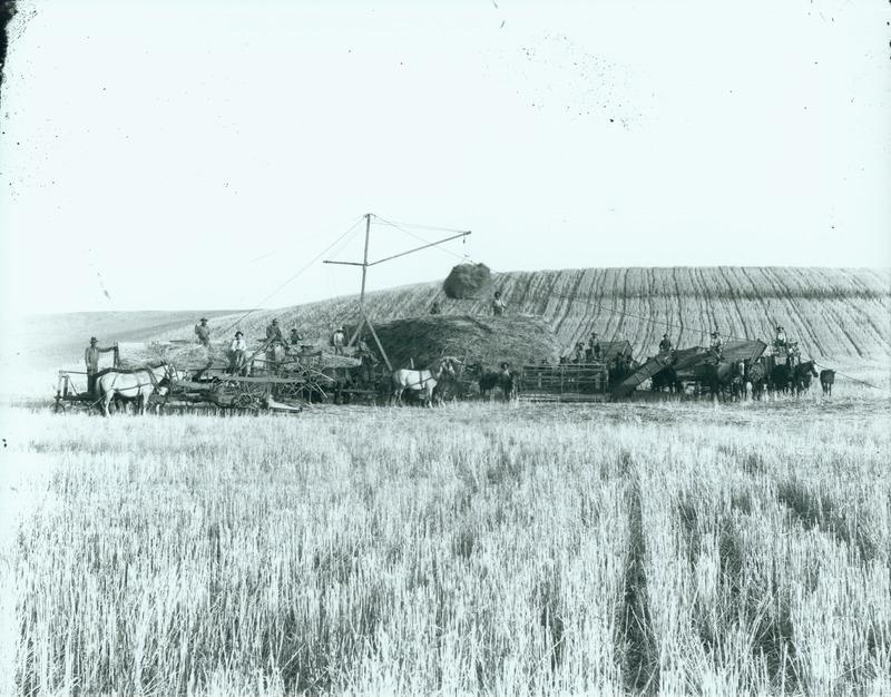 NW Farms & Farming (#5).tif