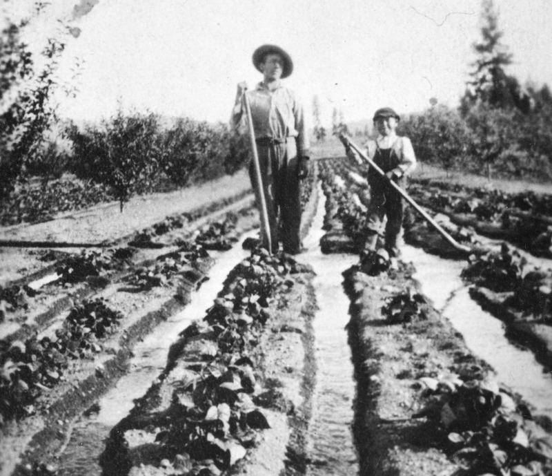 Spokane Valley Agriculture (#21).tif