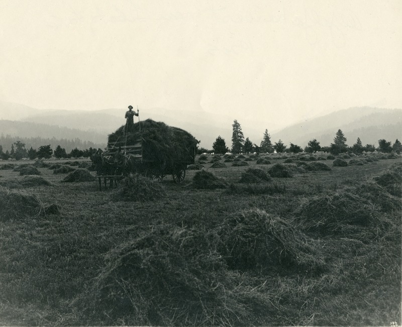 Spokane Valley-Agriculture (#2).tif