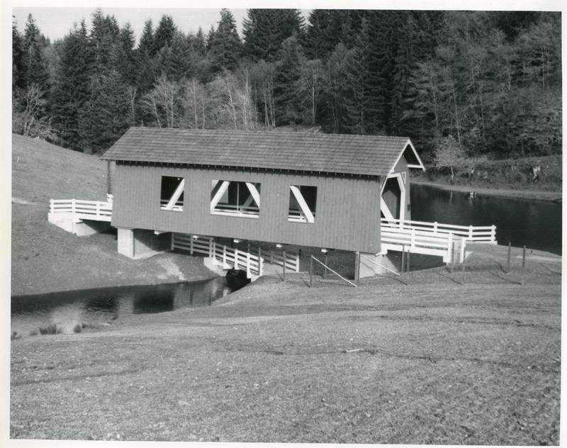 NW_Bridges,Covered02.tif