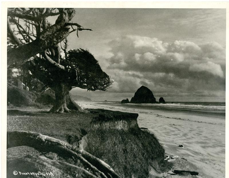 NW_Beaches_Oregon001.tif