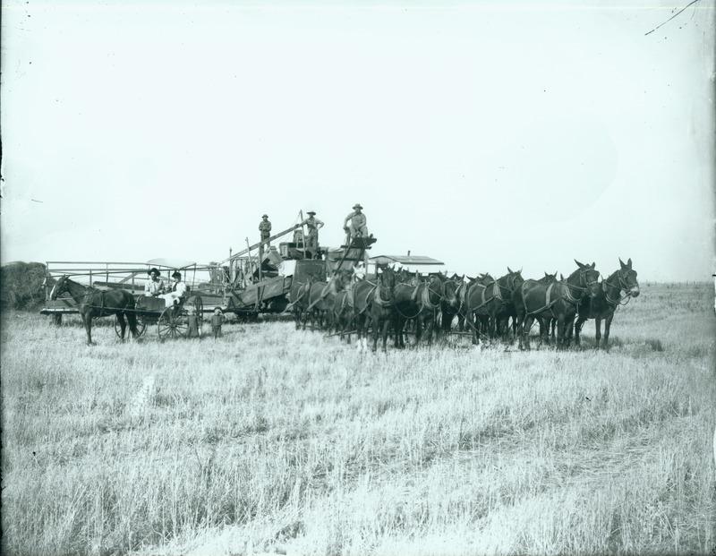NW Farms & Farming (#4).tif