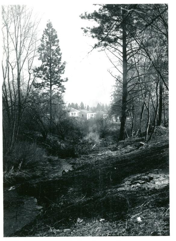 Spokane_Finch_Arboretum002.tif
