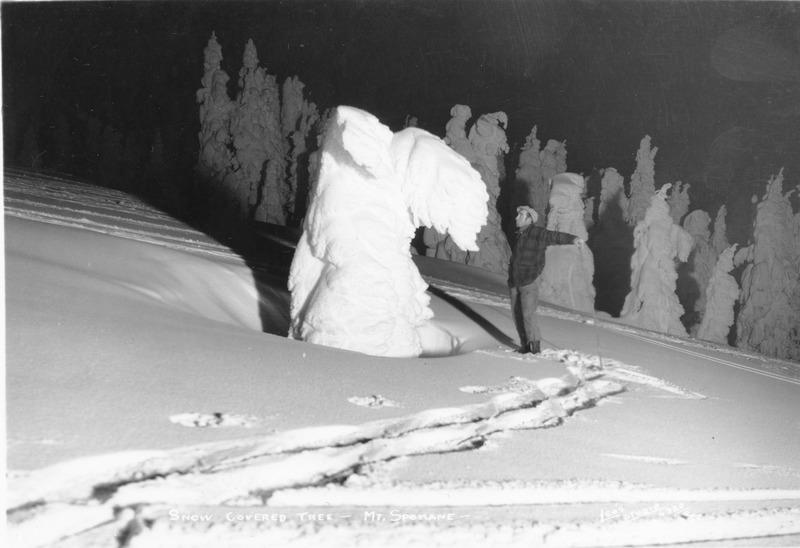 Northwest_Moutains_Mt Spokane_Winter_img020.tif