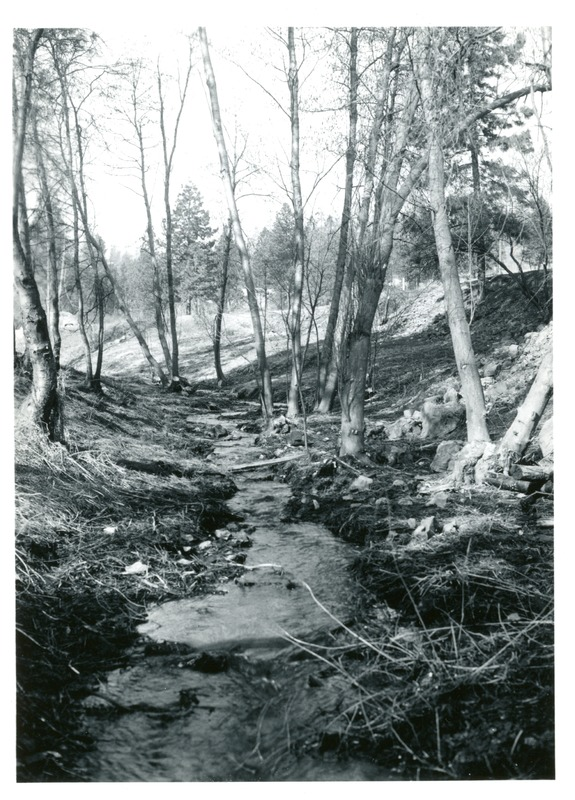 Spokane_Finch_Arboretum004.tif