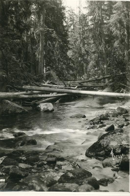 Northwest--Creeks--IndianCreek(Idaho)001.tif