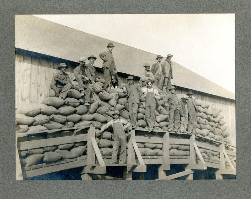 NW Wheat Farms & Farming_Steptoe001.tif
