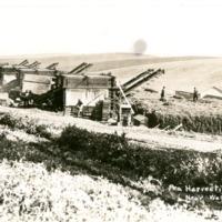 Wash_Agriculture005.tif