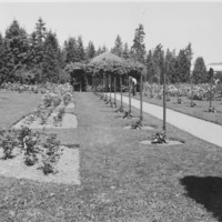 Spokane -- Parks and Playgrounds -- Manito (#01)