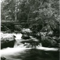 NW_Creeks005.tif