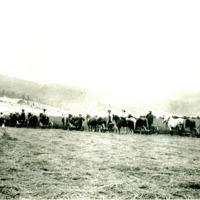 SpokaneValley_Farms006.tif
