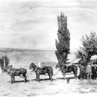 NW_Stagecoaches02.tif