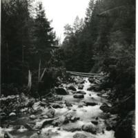 NW_Creeks010.tif