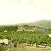 SpokaneValley_Apples022.tif