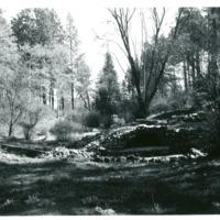 Spokane_Finch_Arboretum003.tif