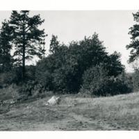 Spokane_DrumhellerSprings017.tif