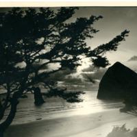 Northwest -- Oregon -- Beaches (#02)
