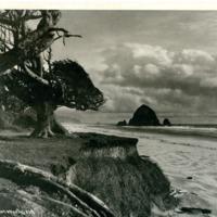 Northwest -- Beaches -- Oregon (#01)