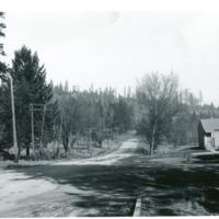 Spokane_Finch_Arboretum008.tif