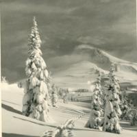Northwest -- Mountains -- Mount Hood (#08)