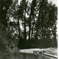 NW_Creeks007.tif