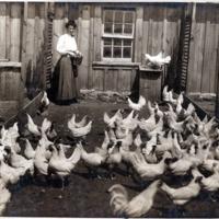 NW Farms & Farming (#6).tif