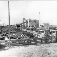 Spokane -- Industries -- Meat Packing (#02)