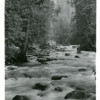 NW_Creeks001.tif
