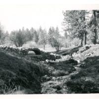 Spokane_Finch_Arboretum018.tif