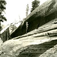 NW_Geology_Wash004.tif