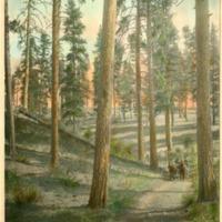 Northwest -- Canyons (#06)