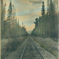 Northwest -- Railroads (#01)