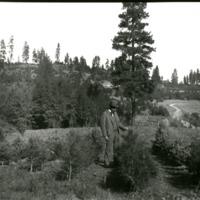 Spokane_Homes_Brookside001.tif