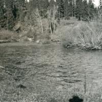 Wash_Smythe's_Ford024.tif