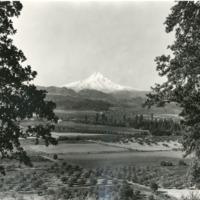 Northwest -- Mountains -- Mount Hood (#01)