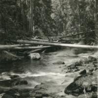 Northwest -- Creeks -- Indian Creek (Idaho) (#01)