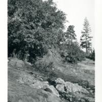 Spokane_DrumhellerSprings004.tif